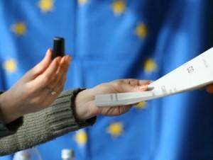 vot-referendum[1]